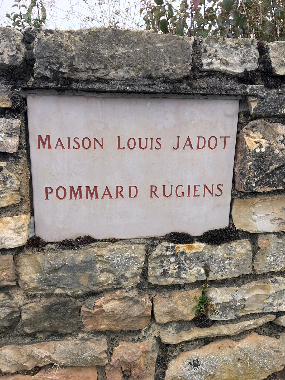 Stone nameplate MAISON LOUIS JADOT POMMARD RUGIENS on a stone wall